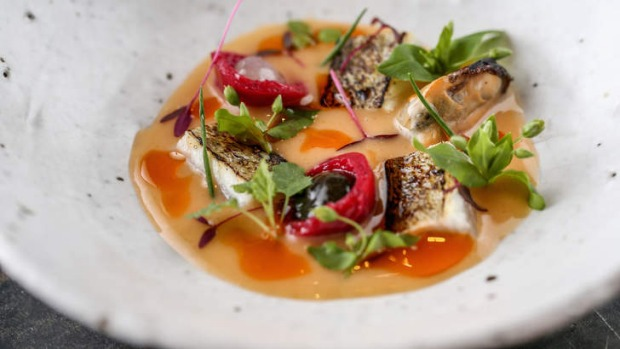 King George whiting with burnt orange puree and quandong.