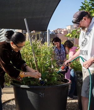 TV chef Kylie Kwong lends a hand at the rooftop garden at the Wayside Chapel.
