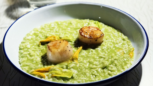 Risotto of zucchini flower and seared sea scallop.