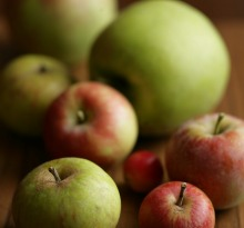 Apples. Ingredient detail pic. Generic still-life of different apple varieties. Brigitte Hafner AUTUMN recipes for ...