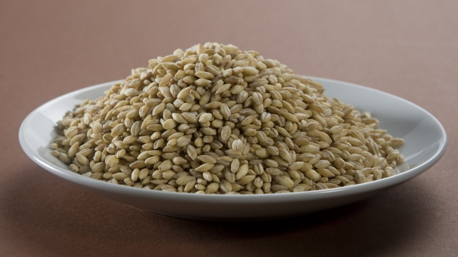 Pearl barley is an ingredient the Daniel Fast includes.