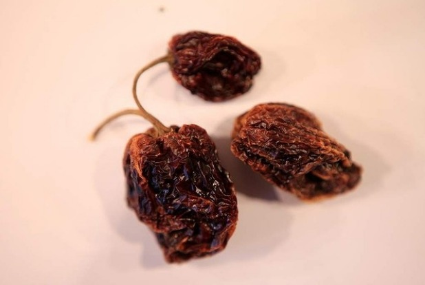 Dried habanero chillies.