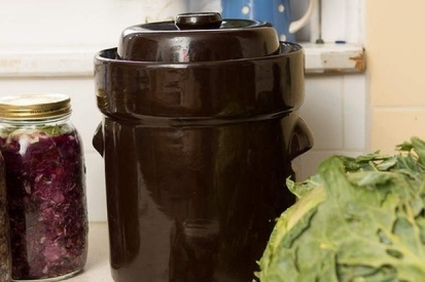 Use a weight to compress the leaves down onto the mixture and leave for 24 hours. Remove weight then screw on lid (if ...