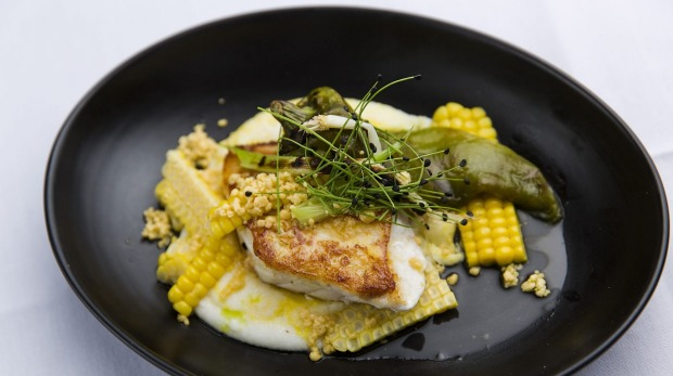 """Hapuka with a corn one-two of """"fresh"""" polenta and urchin butter"""