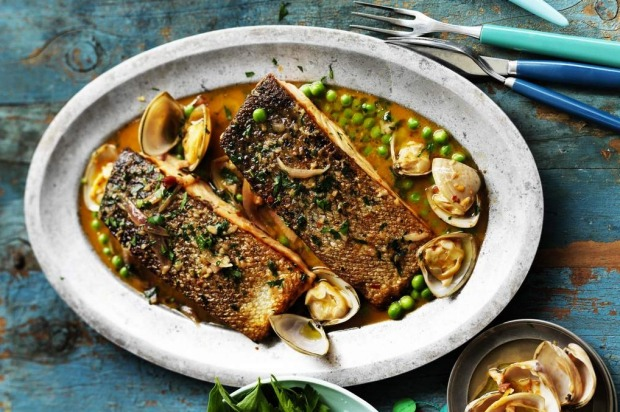 Pan-fried salmon with clam sauce. <a ...