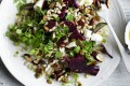 Photograph by William Meppem (GW food - july 30) Neil Perry recipe : Pickled beets with pearl barley, pepitas, feta and ...