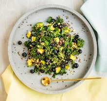 Kale, quinoa and blueberry salad with coconut dressing. Zoe Bingley-Pullin. Supplied pics for apple cider vinegar ...