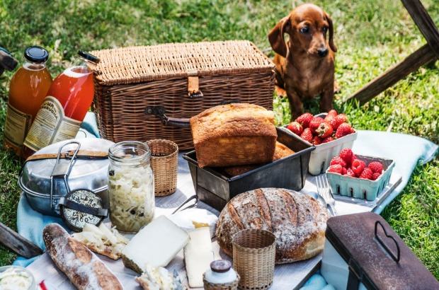 Henderson's top tip: Don't forget to pack a corkscrew in your picnic basket (puppy optional).