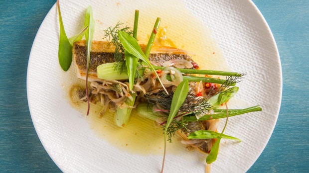 Seared snapper fillet, wild fennel vinaigrette, fermented chilli and dandelion.