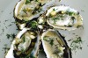 Steamed oysters with a fennel sauce. <a ...