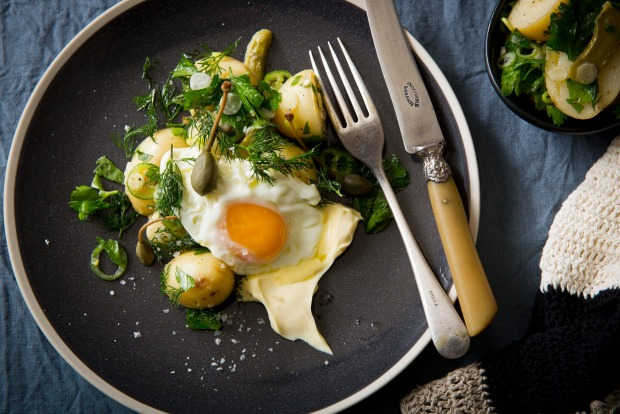 Vinaigrette potatoes with cornichons, caperberries, dill, creme fraiche and fried egg. <a ...