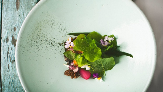 """We are building a New Slovenian cuisine"": ''snails in a spring garden''."