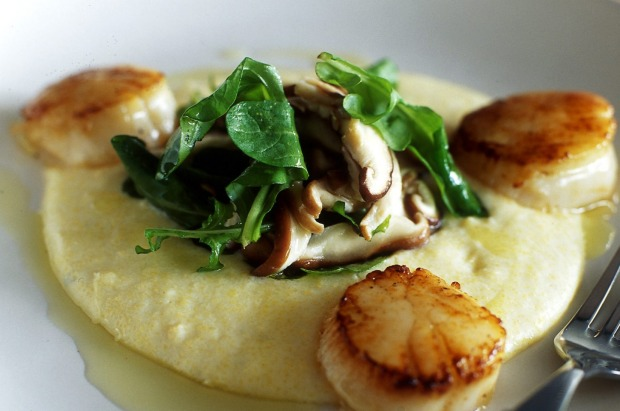 Scallops with blue cheese polenta and shitake mushrooms. <a ...