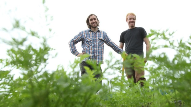 Sixpenny's Daniel Puskas and James Parry in their plot near Mittagong in 2011.