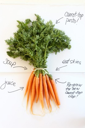 <b>Carrot tops:</b> Waste not! Carrot-top pesto is delicious and thrifty. Jill Dupleix shows how <a ...