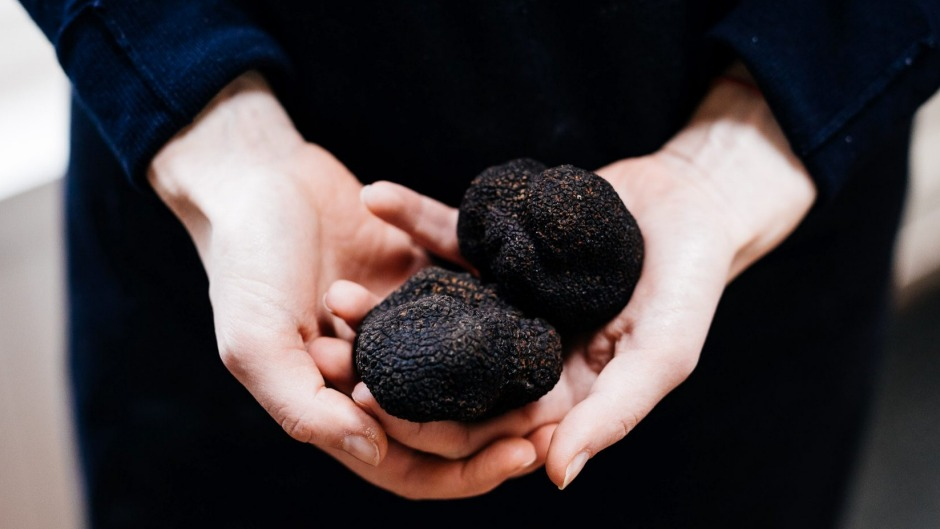 Flavour enhancer: a truffle will add value to a meal with its addictive musky, earthy scent.