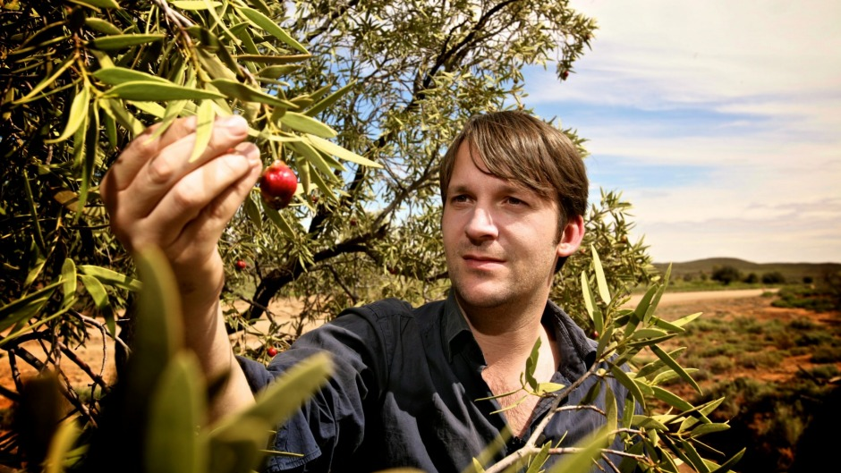 Danish chef Rene Redzepi helped popularise Australian ingredients such as quandongs.