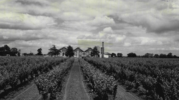 Back in the day: Wynns Coonawarra Estate in 1973.