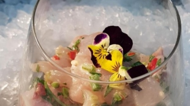 Ceviche at Lobster Cave