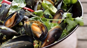 Mussels with green garlic, coriander, kaffir lime and coconut milk.