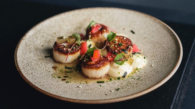 Scallops with wasabi furikake and pickled radish from Vincent.