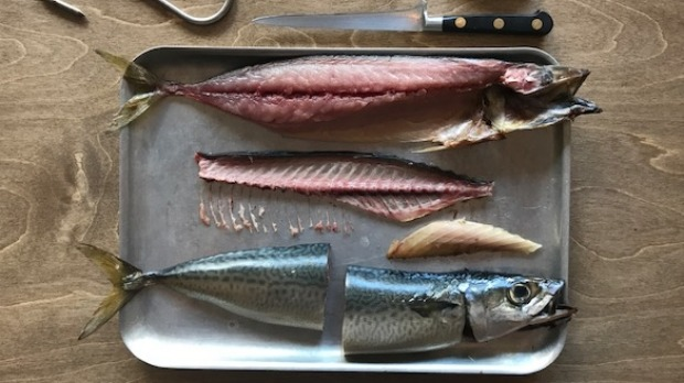 Fish processing workshops will be an integral part of the Saint Peter butchery.