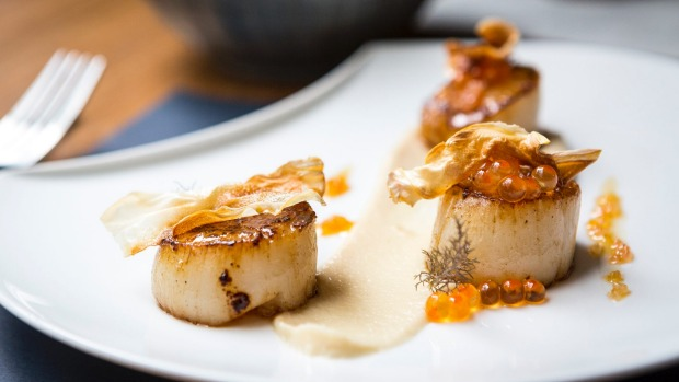 Scallops with cauliflower.