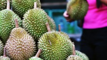 Durians are a divisive fruit from Asia and known for their strong aroma.