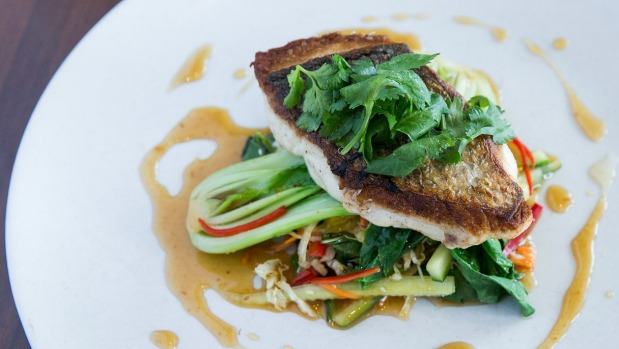 Snapper with bok choy and Asian slaw.
