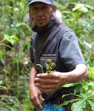 Foraging in New Zealand with Charles Royal.