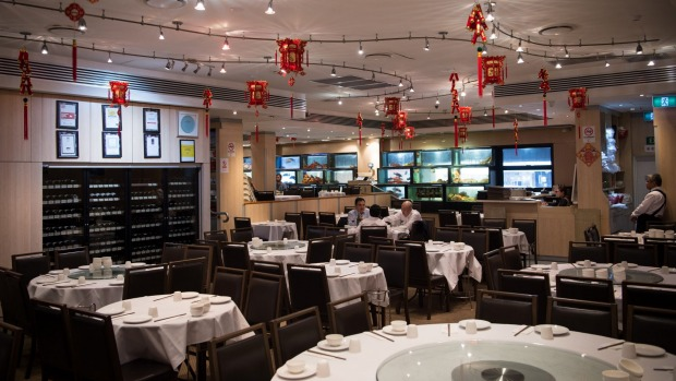 Golden Century Seafood Restaurant wiil reopen for XO pipis after lockdown.