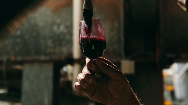 The nationwide haul of shiraz grapes was up 41 per cent.