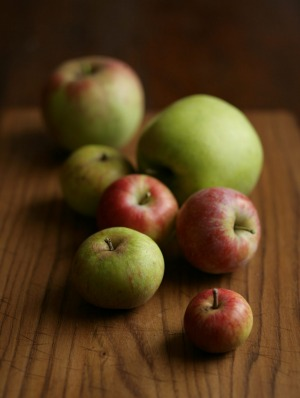 Apples are at their freshest, crunchiest best in autumn.