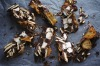 Or her licorice, pear, shortbread and mukhwas rocky road <a ...