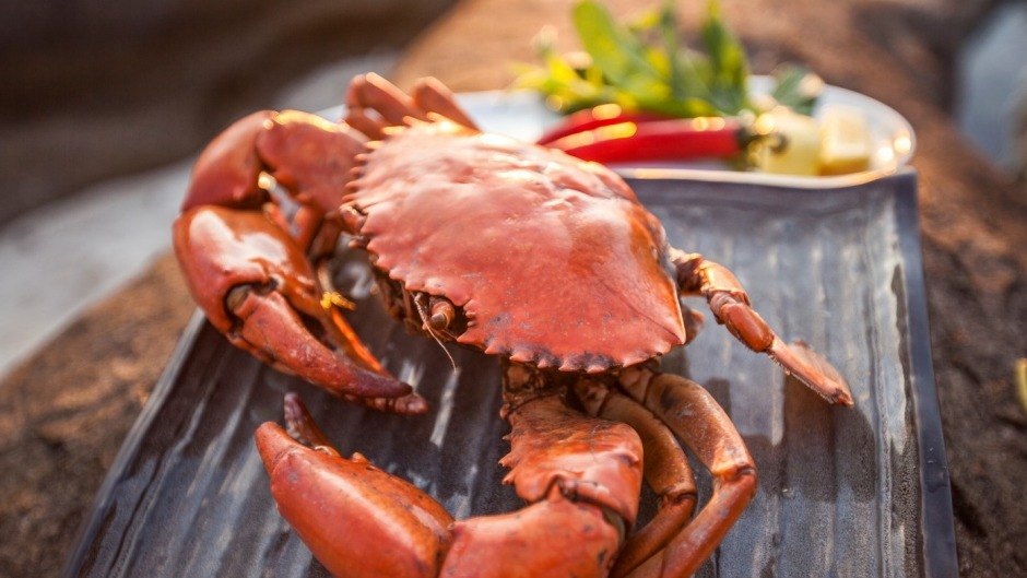 Mud crabs are cooked over coals on the beach on True North Adventure Cruises.