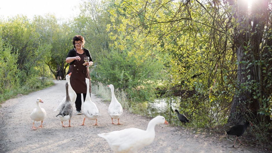 Alla Wolf-Tasker with her geese at the Lake House in Daylesford.