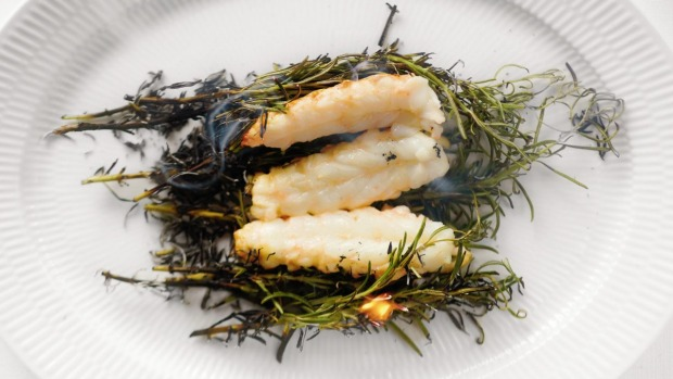 Bo Bech's langoustines in wild rosemary and smoked salt.