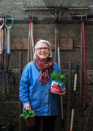 Darina Allen in her potting shed.
