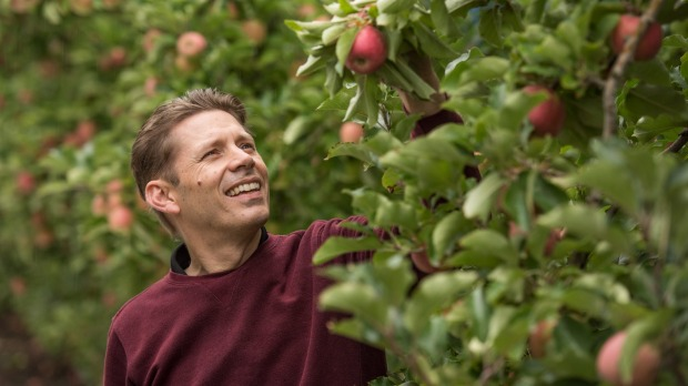 Rowan Little, general manager of Montague, one of Australia's oldest and largest apple growers and distributors.
