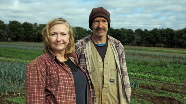 Deri-Anne and Tim Wyatt of Angelica Organic Farm implemented the CSA model in 2017.