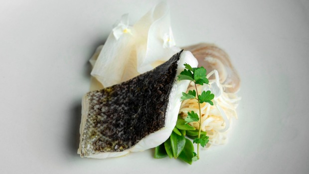 Steamed Murray cod with chilled angasi oyster and white radish at Aria.