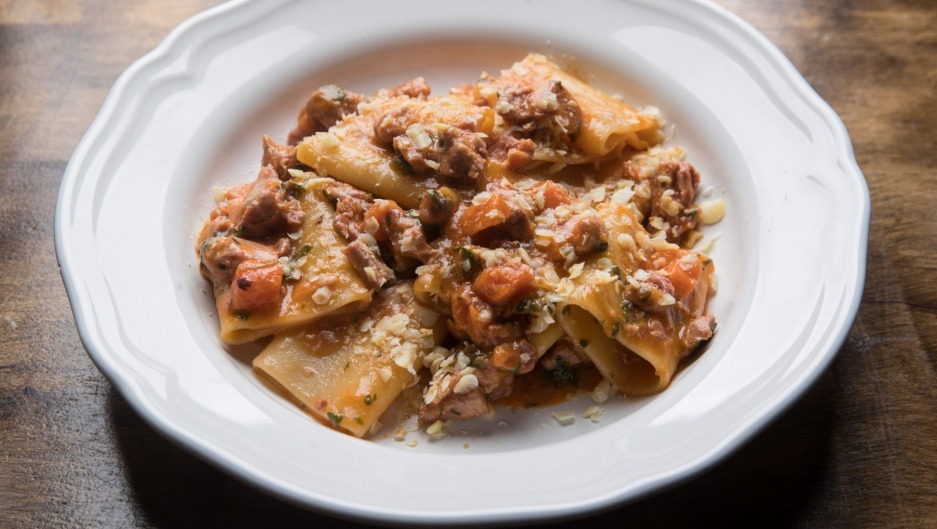 Paccheri pasta with braised duck.