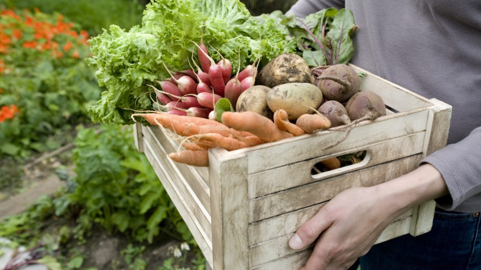 Eating organic ingredients can help cut the risk of cancer, a study has found.