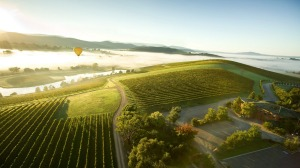 New Yarra Valley wineries are producing stylish wines that don't cost a fortune.