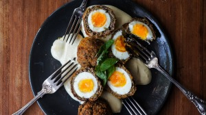 Curried scotch eggs.