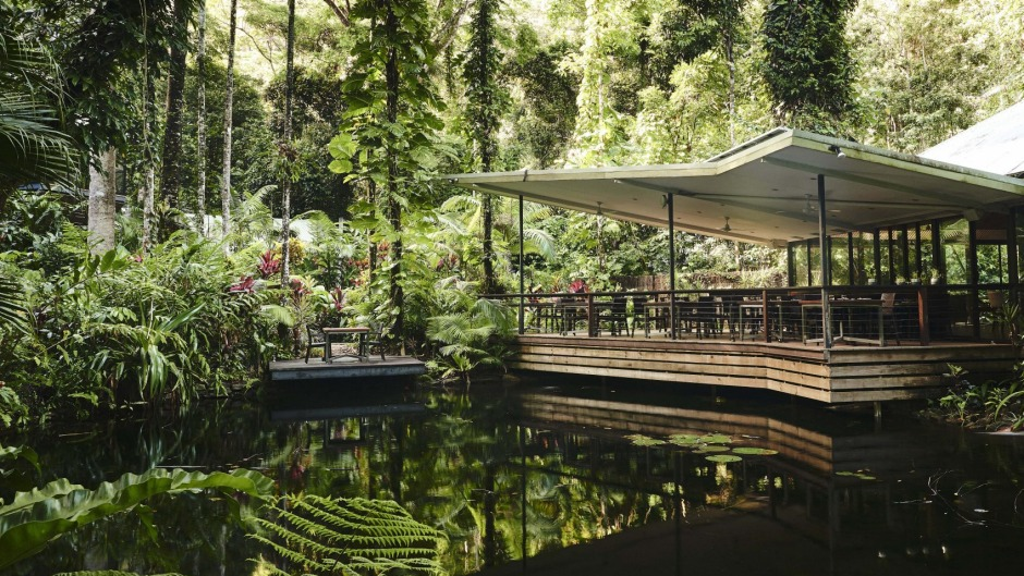 Dine over a jungle lagoon at Daintree Ecolodge.