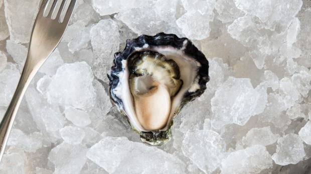 A perfect Sydney rock harvested by Gary Rodely at Tathra Oysters.