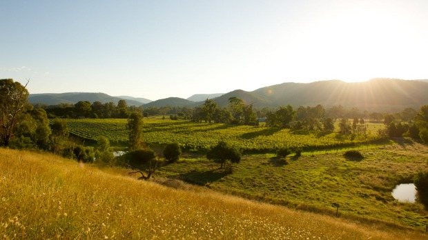 The natural beauty of the King Valley.