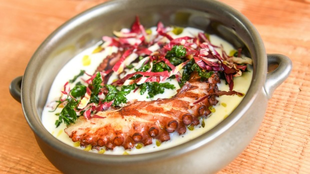 Octopus with harissa, potato and parsley.