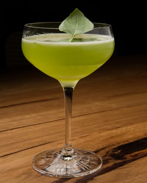 The Basilico cocktail.